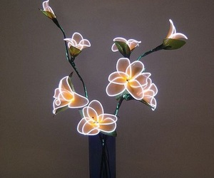 flowers, light, and neon image