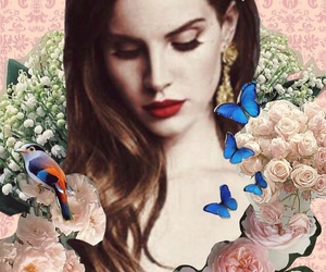 birds, butterfly, and Collage image