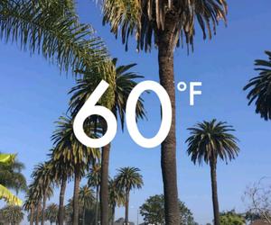 california, Hot, and summer image
