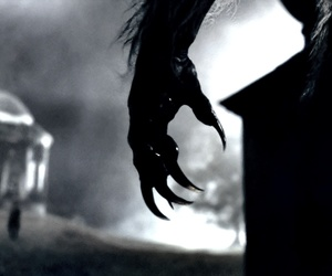 claws, werewolf, and wolfman image