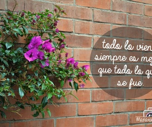 frases, MG, and todo image