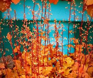orange and turquoise image