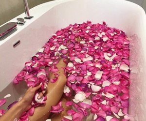 rose, bath, and pink image