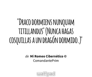 amor, frases, and dragones image