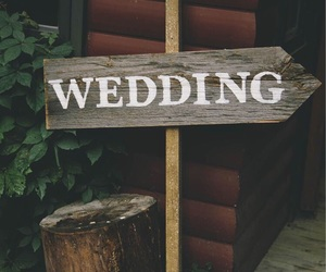 forest, wedding, and wood image