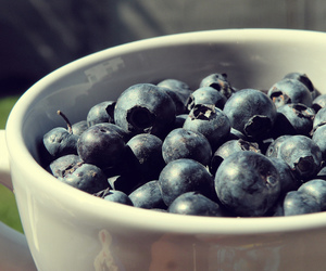 blueberries, cup, and blueberry image