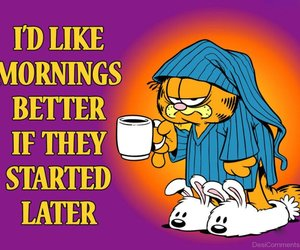 morning, garfield, and funny image