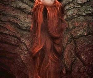 albero, beautiful, and beauty image