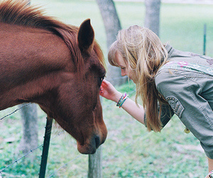 girl, horse, and animal image