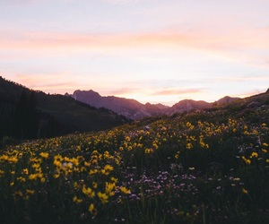 flowers, mouintains, and green image