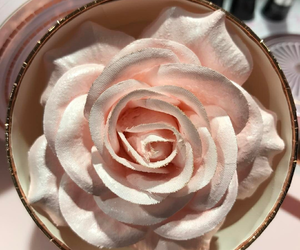 rose, highlighter, and lancome image