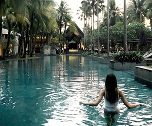 palm trees, phuket, and pool image