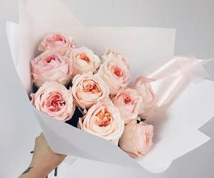 розовый, цветы, and мило image