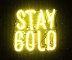 gold and staygold image