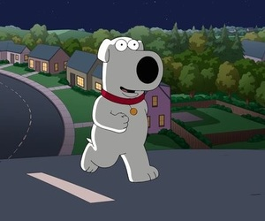 family guy and brian griffin image