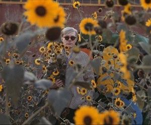 andy warhol, sunflower, and flowers image