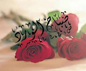 bonjour, flower, and good morning image