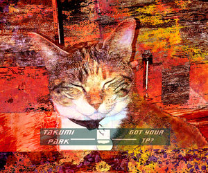 etsy, cat lover, and cat art print image
