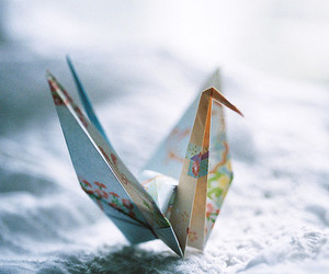 origami, photography, and bird image