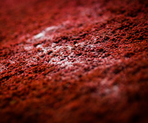 abstract photography, dark red, and maroon image