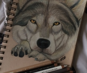 art, colored pencils, and wolf image