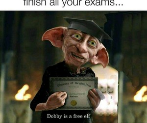 exam, harry potter, and dobby image