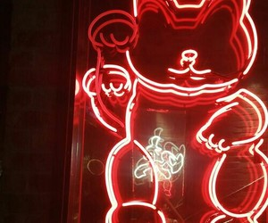 red, neon, and cat image