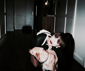 dogs, arianator, and icon image
