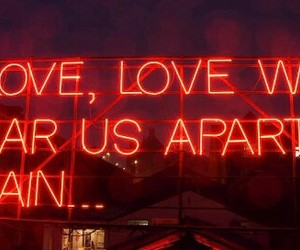 love, lights, and neon image