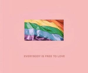 love, rainbow, and gay image