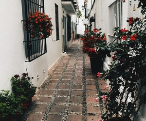 flowers, marbella, and streets image