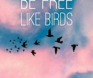 birds, free, and quote image