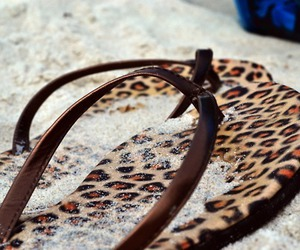 beach, summer, and leopard image