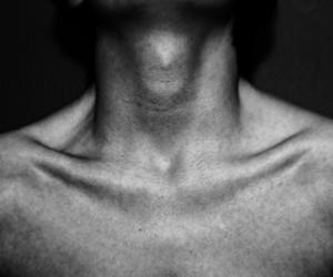 collar bones, neck, and sexy image