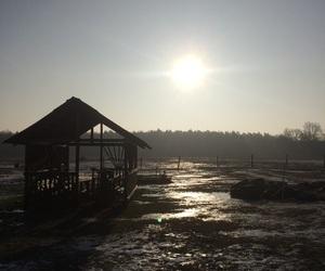 ice, snow, and sun image