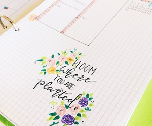 blossom, flowers, and planner image
