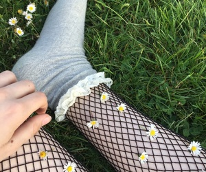 aesthetic, daisies, and fishnets image