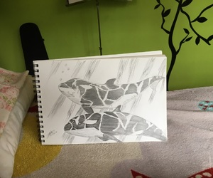 animals, draw, and life image