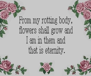 flowers, eternity, and quotes image