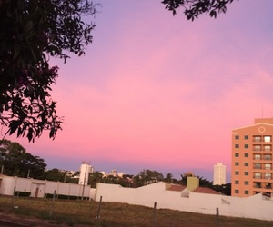 pink sky and cotton candy clouds image