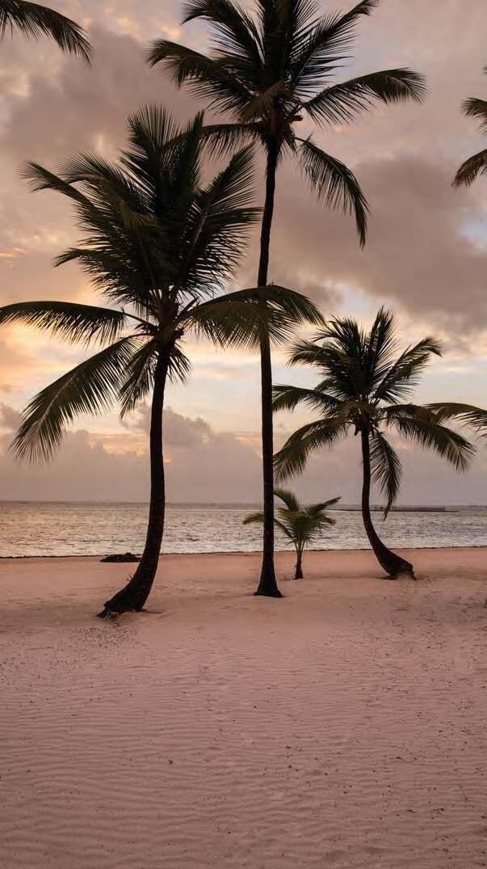 beach, sea, and wallpaper image