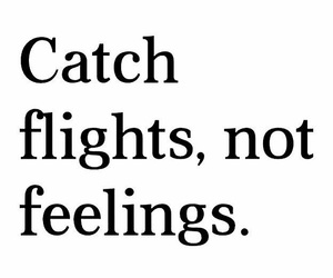 feelings, flight, and quotes image