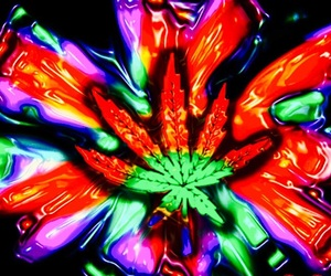colorful, leaf, and trippy image