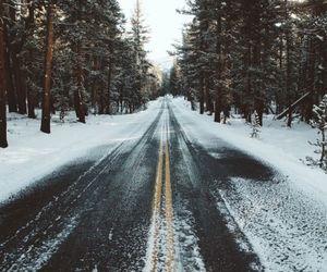 naturaleza and camino image