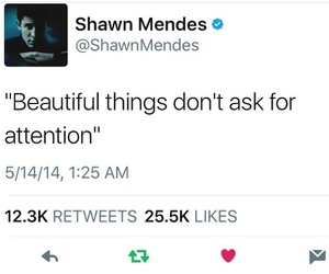 quotes, twitter, and shawn mendes image