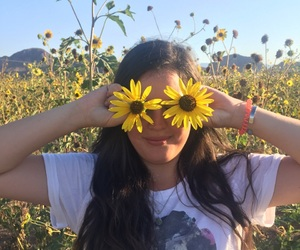 summer, love, and sunflower image