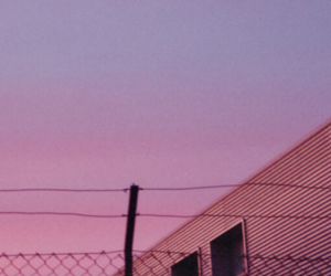 header, pink, and purple image