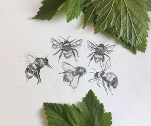 bees and love image