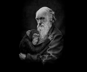 charles darwin, threadless, and illustration image