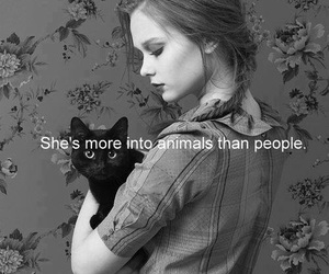 animal, cat, and quote image